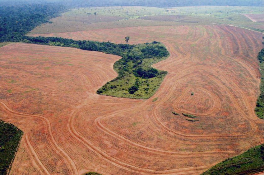 Как Евросоюз и Mercosur договорились разграбить планету