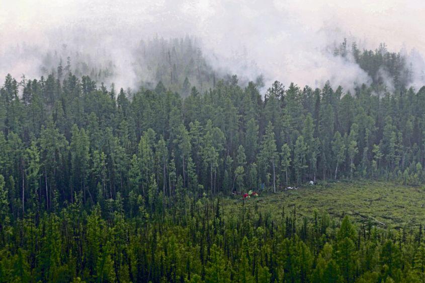 Лесные пожары в Европе.