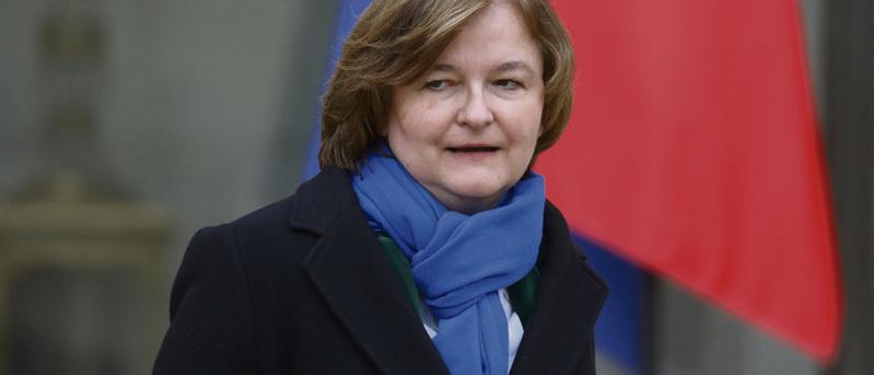 Лидер списка кандидатов на европейские выборы от движения «Вперёд!Республика», отчаянно пытающаяся быть нравственным ориентиром для своих соратников, как выяснилось, имеет небезупречную репутацию. Будучи студенткой Высшей школы политологии в 1984 году, она состояла среди ультраправых