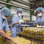 COVID-19: наёмные работники устали от санитарного кризиса