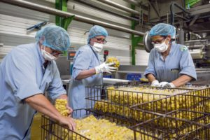 В опубликованном 13 октября исследовании говорится о трагических последствиях пандемии, сказавшихся на здоровье работников.