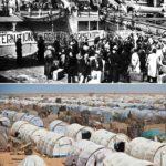 14 декабря было образовано управление Верховного комиссара ООН по делам беженцев (УВКБ)